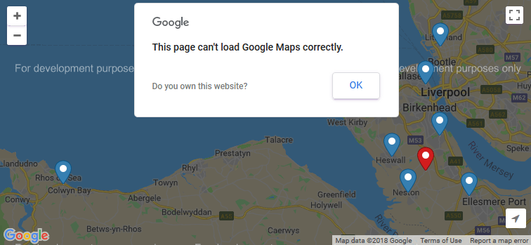 Google Map Errors